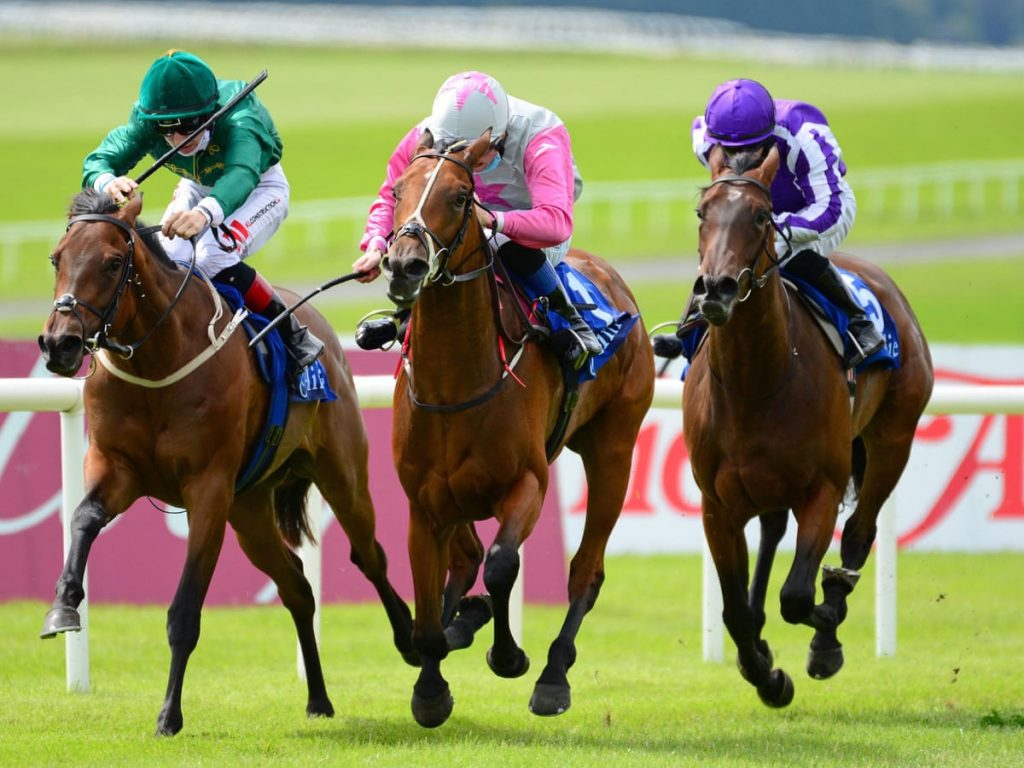 Things to Know about Horse Racing Betting
